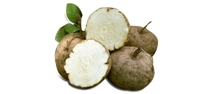 pueraria mirifica for Vaginal Atrophy