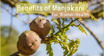 Manjakani: How It Works, Effects & Results Revealed [2019]